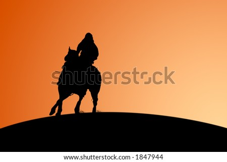 Silhouette of a horse and rider against a sunset.