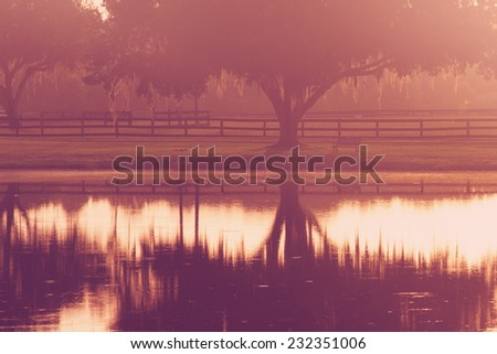 Silhouette of a lone tree and bench by lake pond water with reflection early at sunrise or sunset with   a retro vintage filter to feel inspirational rural peaceful meditative relaxing - stock photo