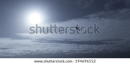 Silhouette of a lonely seagull flying free on bright sunny sky with nice fluffy clouds. - stock photo