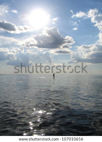 silhouette of a man/woman walking on water