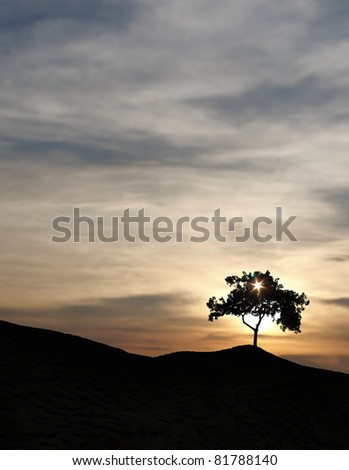 Silhouette of a solitary tree with sunbeam penetrating through its plume of leaves on top of a remote rural hill against a surreal candy colored sunset. - stock photo