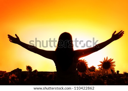 Silhouette of a young happy woman on the sun and sunflowers - stock photo