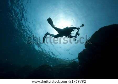 silhouette of an underwater photographer taken in the Red Sea.
