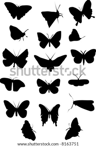 silhouette of butterflies illustration