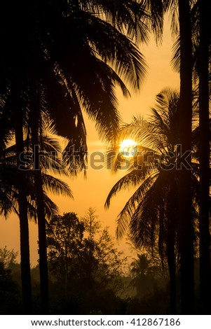 Silhouette of coconut trees with sunrise. - stock photo