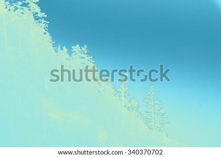 Silhouette of conifers on coastal headland,  Short Sand Beach, Oswald West State Park, Oregon - stock photo