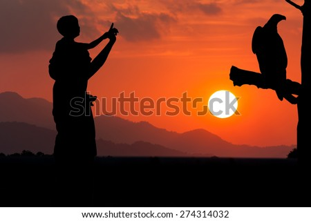 silhouette of father and son point look at to eagle bird bird sitting on the timber sky on the sunset background - stock photo