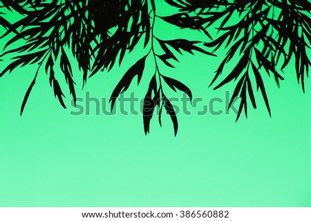 Silhouette of leaves over green background - stock photo