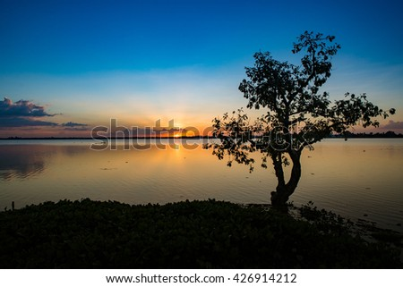 Silhouette of lonely tree in lake against blue and golden sky background,sunset time - stock photo