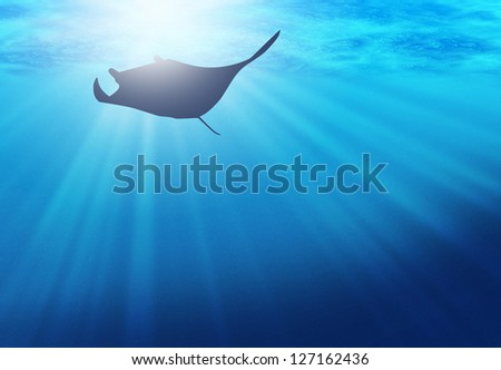 silhouette of manta in ocean - stock photo