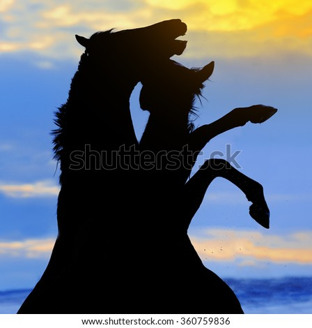 Silhouette of rearing two horses against dramatic sky - stock photo