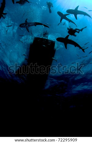 Silhouette of sharks and boat - stock photo