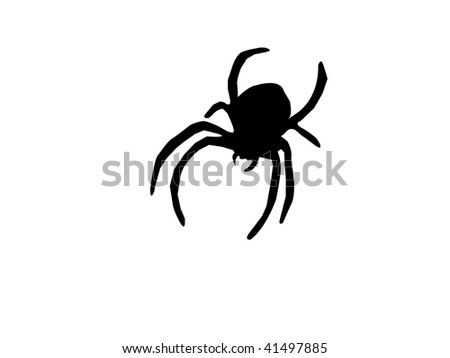 Silhouette of Spider Isolated on a White Background