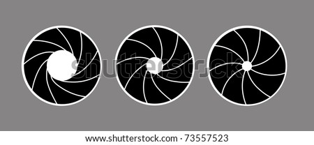 silhouette of the diaphragm on white background - stock photo