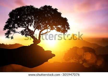 Silhouette of Two Hand holding young plant on Abstract pastel forest blurred background