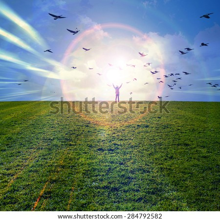 Silhouette of young man standing with hands open wide on the top of green field under sunset skies and bird flying above ,freedom , success and freedom concept - stock photo