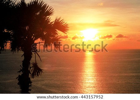 silhouette palm tree sunset on the sea at Laem Promthep in phuket
