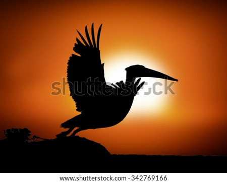 Silhouette pelican flying over the lake on sunset background, Kenya, Africa - stock photo