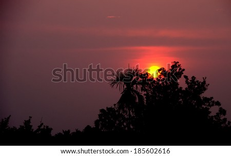 silhouette sunset - stock photo