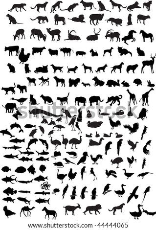 silhouettes of animals illustration