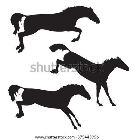 Silhouettes of horses. Black horses on isolated background. Set of wild horses.  horse collection. Collection of horse race, horse jump and horse run - stock photo