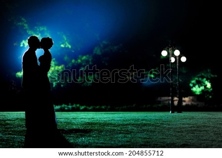 Silhouettes of hugging and kissing couple in the evening park - stock photo