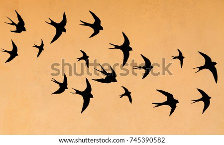 Silhouettes of many swallows on a orange background