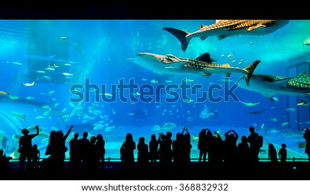 Silhouettes of people and giant whale shark of fantasy underwater in Oceanarium - stock photo