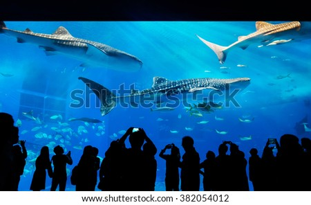 Silhouettes of people and giant whale shark of fantasy underwater with dramatic light ray in Oceanarium - stock photo