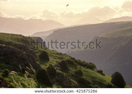 Silhouettes of photographer and eagle on the edge of canyon in Aksu-Jabagly natural reserve in Alatau mountains, Central Asia, Kazakhstan