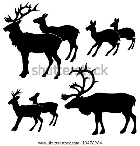 silhouettes of the deers - stock photo