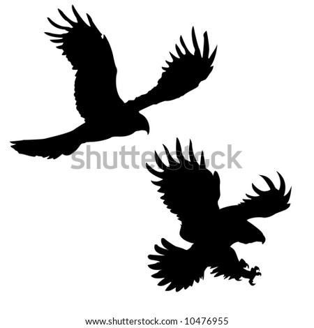 silhouettes of the ravenous birds - stock photo