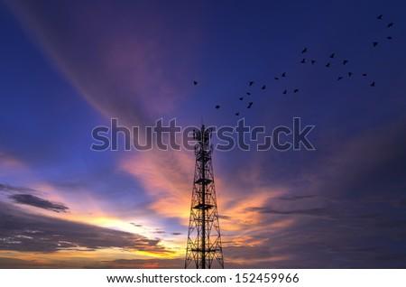 Silhouettes Telecommunication tower evening sky beautiful birds flying. - stock photo