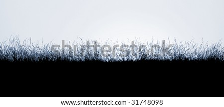 Silhoutte of wild grass at sunset on hill - stock photo