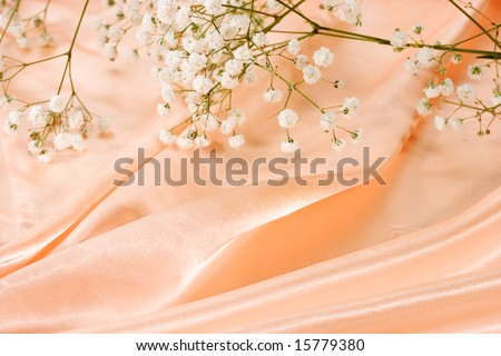 Silk and flower background - stock photo