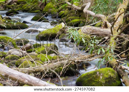Silky stream captured in the Smoky Mountains during springtime - stock photo