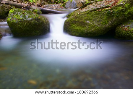 silky stream in a forest. Valley of Aspe, Pyrenees, France - stock photo
