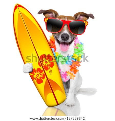 silly funny surfer dog with fancy surf board and flower chain - stock photo