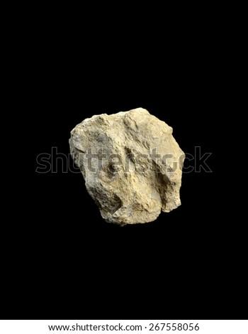 Silurian limestone - stock photo