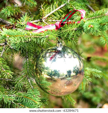 Silver Christmas  ball on fir branch - stock photo
