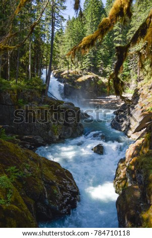 Silver Falls Hiking Trail, Randle, WA