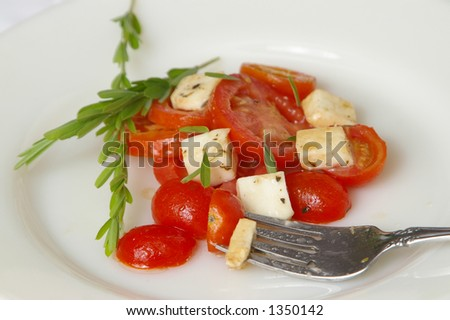 Silver fork rests on a plate of fresh cheese and tomato salad. - stock photo