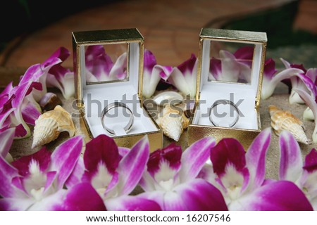 Silver wedding bands displayed with sand and shells - beach theme. - stock photo