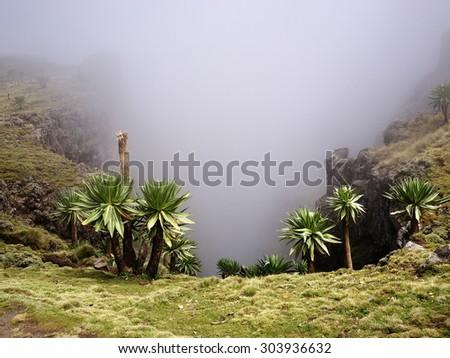 Simien mountains, Ethiopian Highlands - stock photo