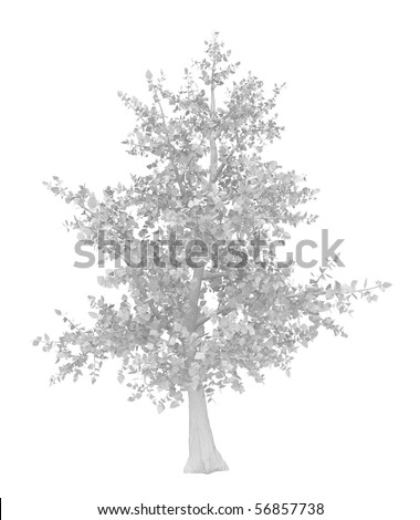 Simple tree 3d model, over white, isolated - stock photo