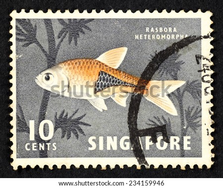 SINGAPORE - CIRCA 1962: Grey color postage stamp printed in Singapore with image of a Rasbora Heteromorpha fish, also known as Harlequin Rasbora. - stock photo