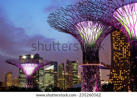 SINGAPORE - FEBRUARY 05, 2014: The Supertree Grove at Gardens by the Bay at night. These unique Supertrees are tall?? up to 16 stores in height, created by UK landscape architects Grant Associates.  - stock photo