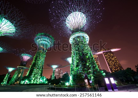 SINGAPORE -JANUARY 20: Night view of Supertree Grove at Gardens by the Bay on Jan 20, 2015 in Singapore. Spanning 101 hectares of reclaimed land in central Singapore, adjacent to the Marina Reservoir - stock photo