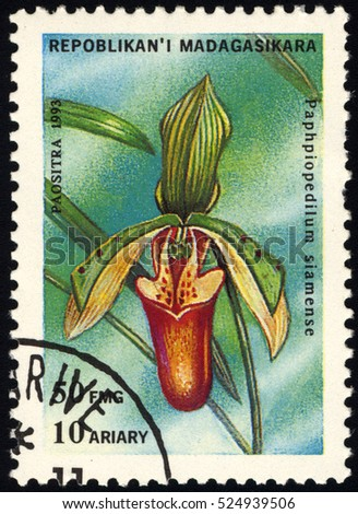 SINGAPORE â?? NOVEMBER 29, 2016: A stamp printed in Madagascar shows Ladyâ??s Slipper, Paphiopedilum Siamense, Orchid, circa 1993