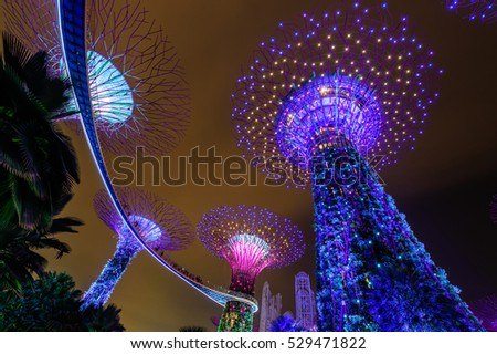 SINGAPORE - NOVEMBER 22, 2016: Supertrees at Gardens by the Bay. The tree-like structures are fitted with environmental technologies that mimic the ecological function of trees.